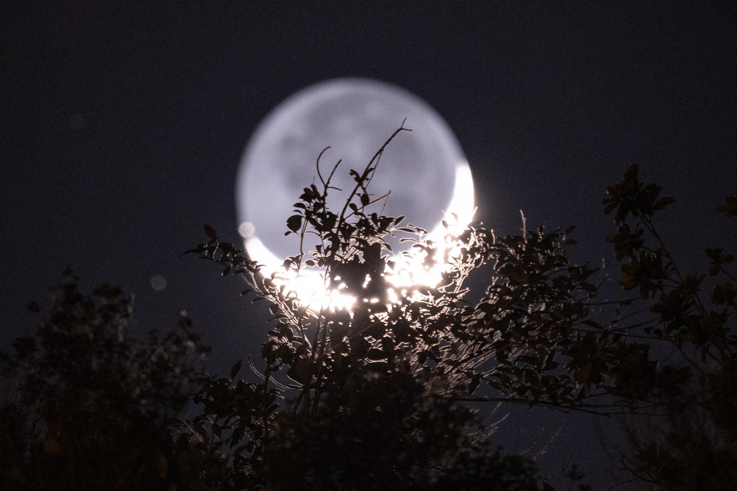 Full Moon Release Yoga and Meditation Workshop